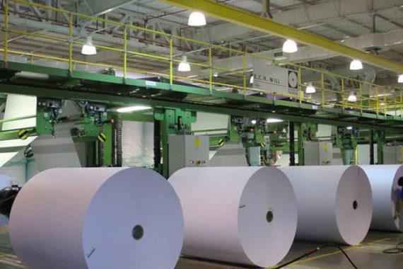 Correias para Indústria de Papel e Celulose, Papel Higiênico e Embalagens - Beltex